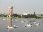 Lake_merritt_sauls_026